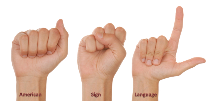 The detailed understanding of the American Sign Language