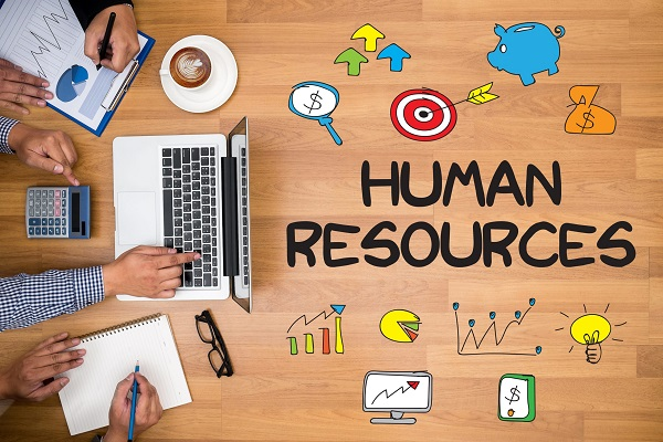 Software for Educational Human Resources